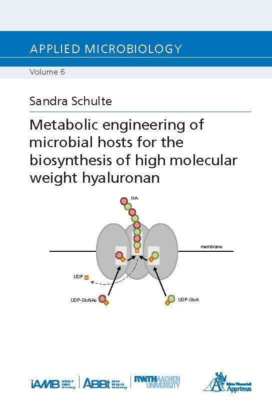 Metabolic engineering of microbial hosts for the biosynthesis of high molecular weight hyaluronan