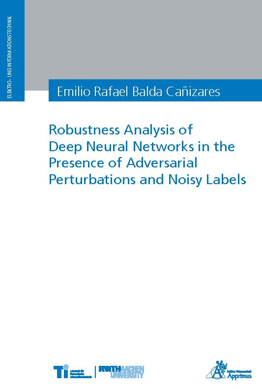 Robustness Analysis of Deep Neural Networks in the Presence of Adversarial Perturbations and Noisy Labels