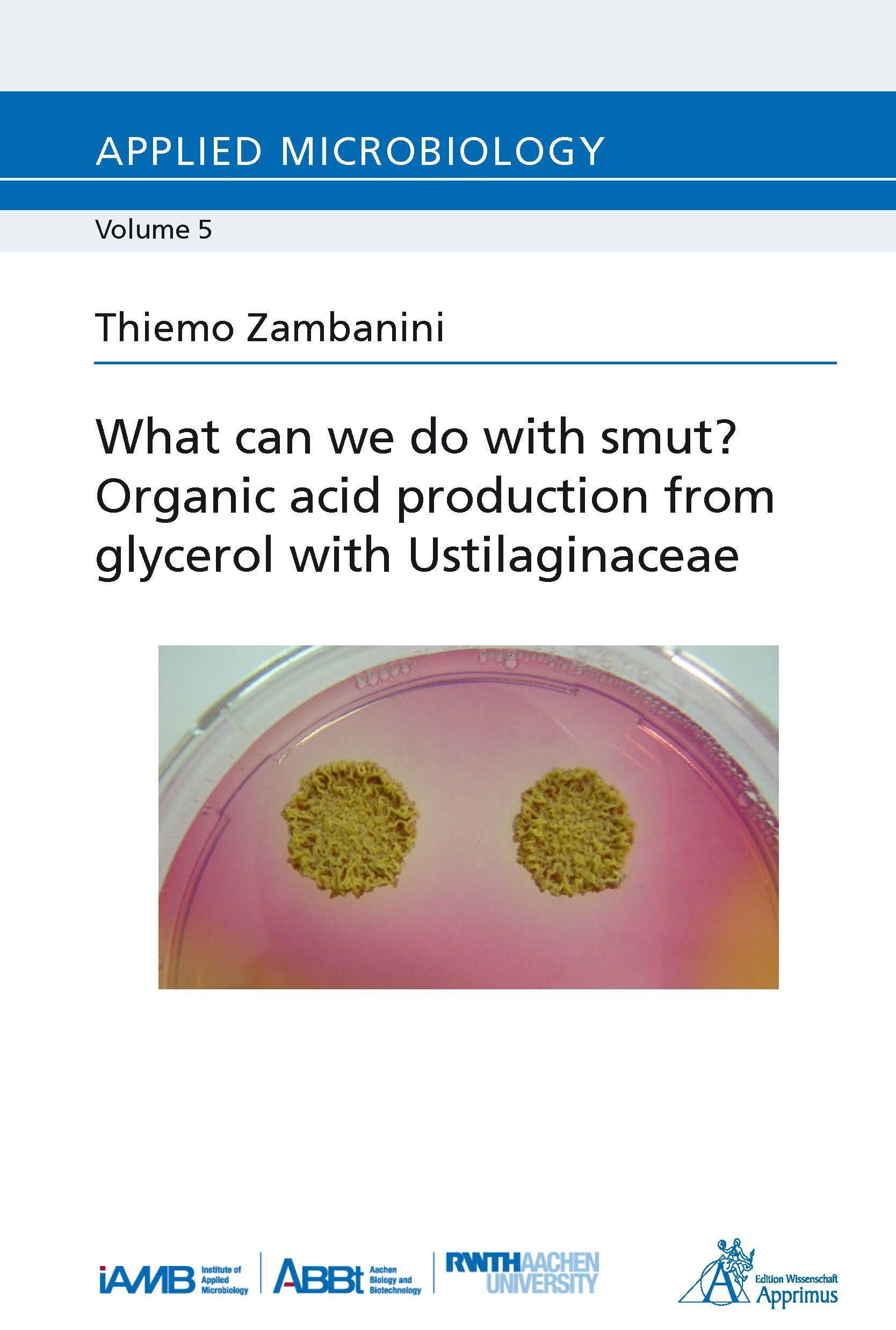 What can we do with smut? Organic acid production from glycerol with Ustilaginaceae